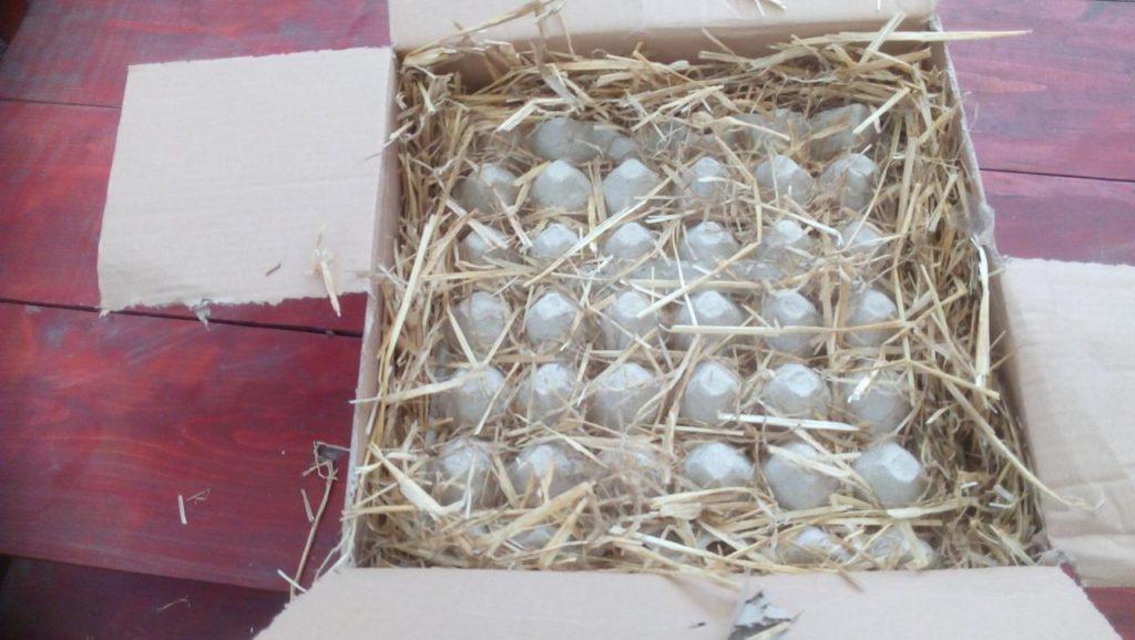 Óvjuk és módjával tisztítsuk a tojásokat