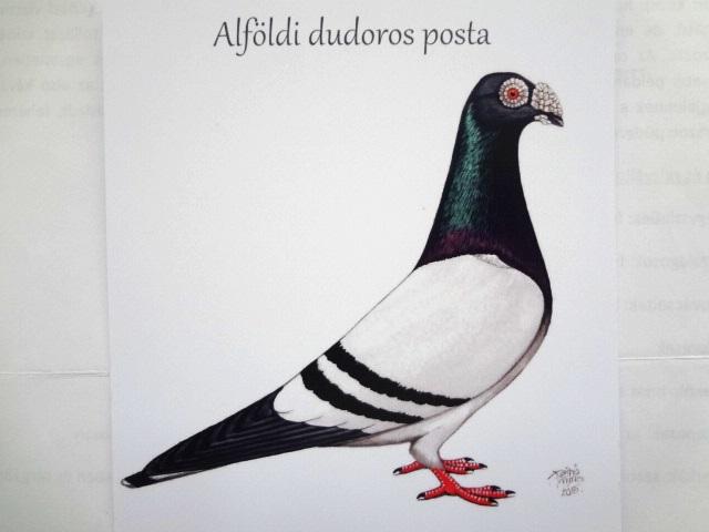 Alföldi dudoros standard ábrázolása